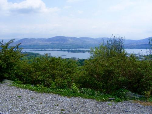 Bedrock View